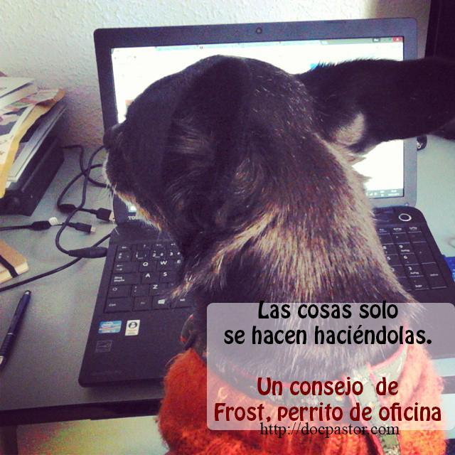 Los consejos de Frost, perrito de oficina (2)