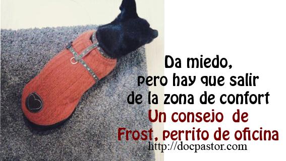 Los consejos de Frost, perrito de oficina (9)